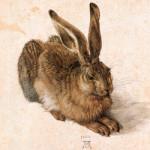 Bild: A. Dürer,